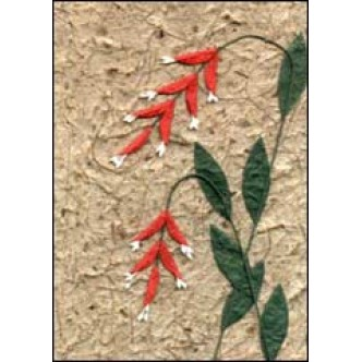 Red Drooping Flowers